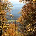 Herbsttag_02
